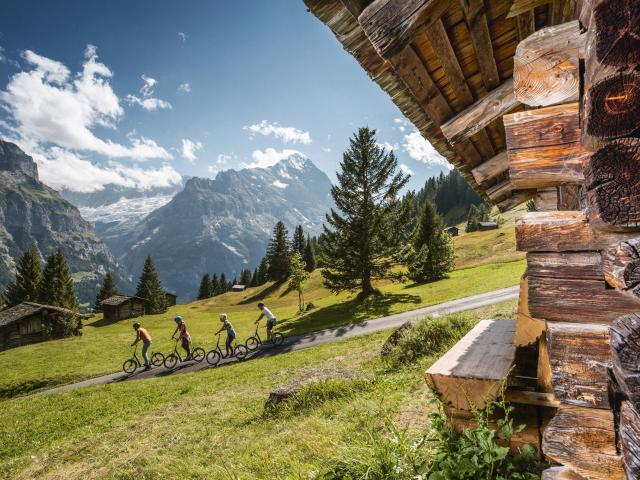 Grindelwald First Summer Trottibike