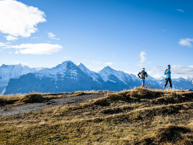 Eiger Ultra Trail Package Belvedere Swiss Quality Hotel Grindelwald