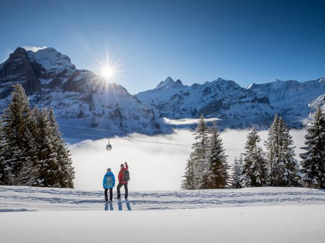 Grindelwald Winter Hiking